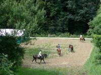 pferdesporttage_2008 (20)