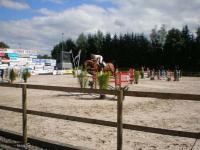pferdesporttage_2008 (11)