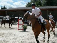 pferdesporttage_2008 (16)