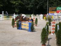 pferdesporttage_2008 (7)