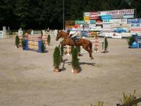 pferdesporttage_2008 (8)