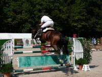 pferdesporttage_2009 (10)