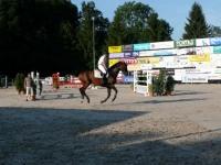 pferdesporttage_2009 (19)