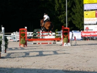 pferdesporttage_2009 (17)