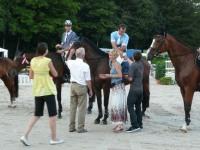 pferdesporttage_2010 (14)