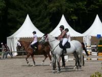pferdesporttage_2010 (4)