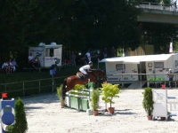 pferdesporttage_2010 (19)