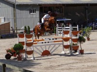 pferdesporttage_2012 (20)