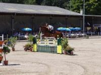 pferdesporttage_2012 (21)