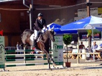pferdesporttage_2014 (11)