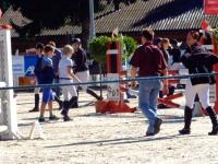 pferdesporttage_2014 (15)