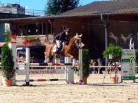 pferdesporttage_2014 (19)