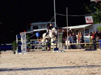 pferdesporttage_2014 (6)
