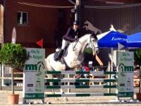 pferdesporttage_2014 (7)