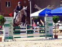 pferdesporttage_2014 (10)