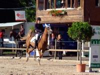 pferdesporttage_2014 (12)