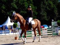 pferdesporttage_2014 (14)