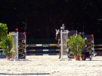 pferdesporttage_2014 (17)