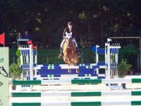 pferdesporttage_2014 (4)