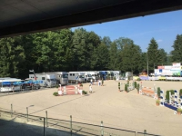 Pferdesporttage_2015 (6)