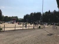 pferdesporttage_2018 (6)
